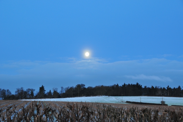 The moon over the snowy field